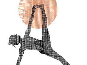 Yoga khác gì với thể dục? Con Đường Luyện Tập Yoga Cho Người Mới Bắt Đầu