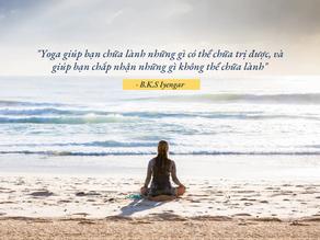 Tại sao Yoga có thể chữa bệnh tự nhiên? Người mới bắt đầu tập Yoga trị liệu cần phải đọc!