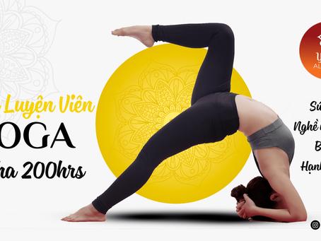 6 Lý Do chọn nghề huấn luyện viên Yoga | Yoga Trái Tim Vàng