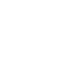 Verizon Logo.png