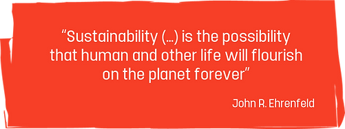 sustainability-quote.png