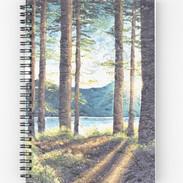 work-51238974-spiral-notebook.jpeg