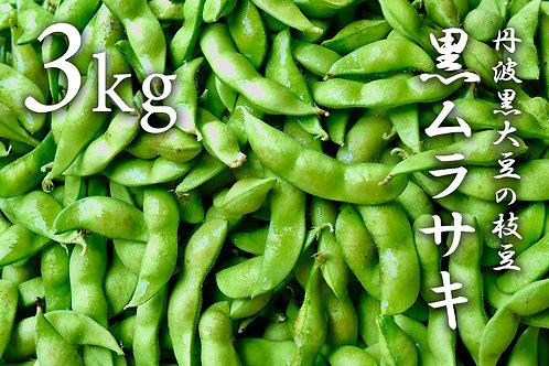 【完売!】丹波黒大豆の枝豆「黒ムラサキ」3kg