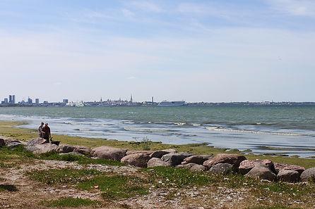 Вид на город из Пирита