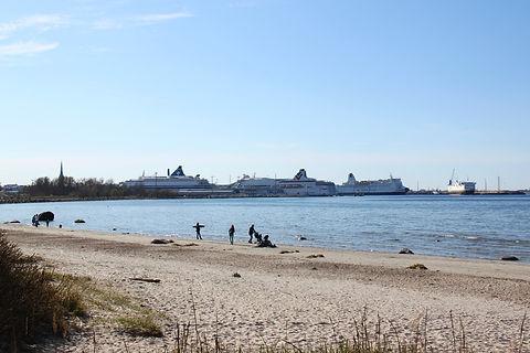 Корабли старого порта Таллин