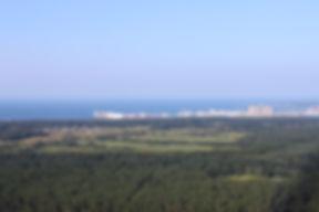 Вид с Телебашни на порт