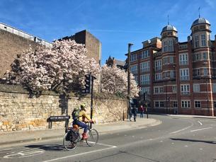 Оксфорд - стоит ли ехать?