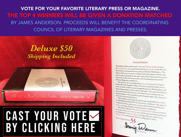 ad for deluxe sale and vote*****.jpg