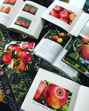 Apfelsorten Bücher.jpg