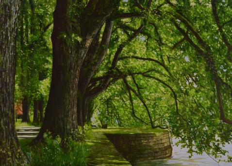 Andrea Scholz, Zweige über dem Wasser