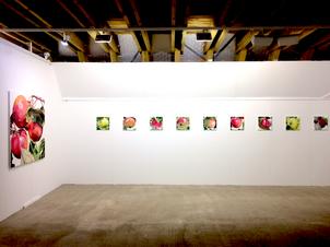 Radiale 2018 , Ausstellungsort Hirschber