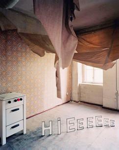Kerstin Flake, Fake Spaces 17