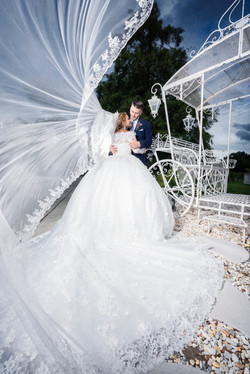 wedding photography veil picture