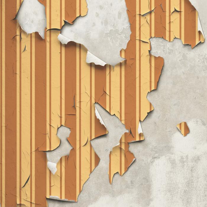 peeling-wallpaper-damp-proofing-bath