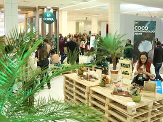 Gluten Free Brasil homenageia o Coco em 2018 com diferentes ações exclusivas