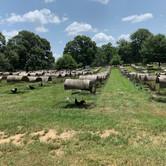 176 - Farm
