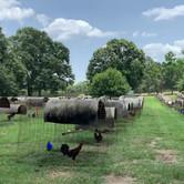 Video 2 Farm