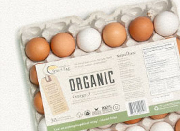 18 pack Free Run Eggs