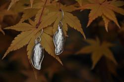 Petites feuilles striées