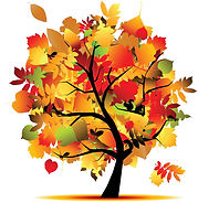 fall pretty tree.jpg