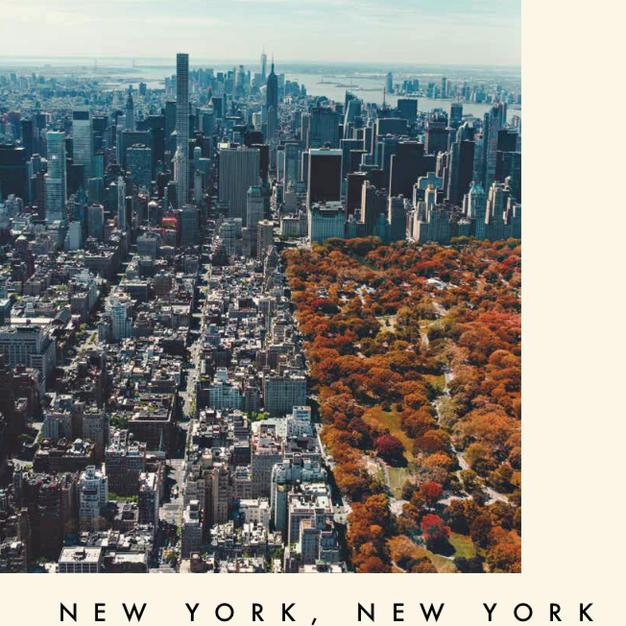 NEW YORK, NEW YORK - 为《品》杂志2019年9月份月刊写的短文