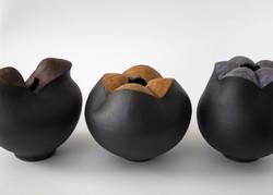 Moxies: Chestnut, Coral, Lavender