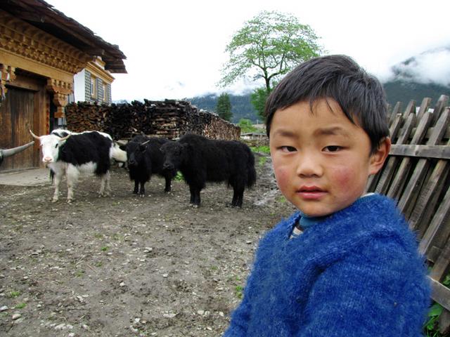 Lulang, Tibet