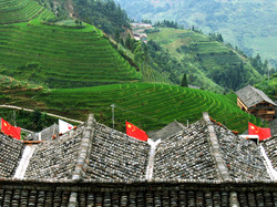 Rice Terraces, Longsheng, China