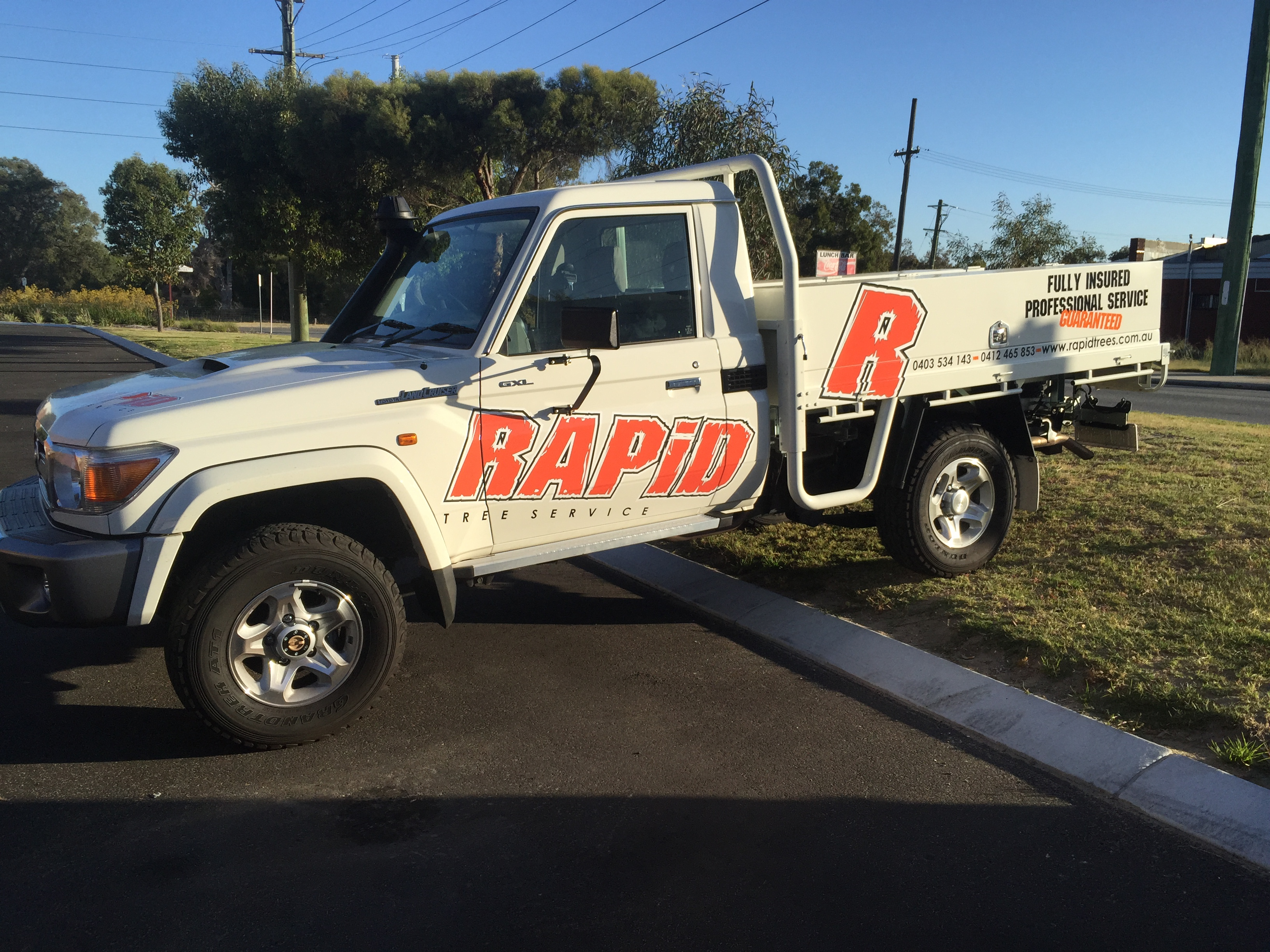 Rapid Tree Service Rebrand