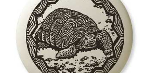 Desert Tortoise: Pathfinder Pendant