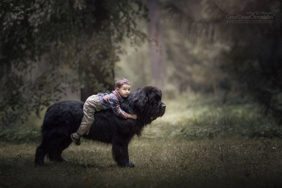 Closure, dog, boy with dog, cute, wholesome