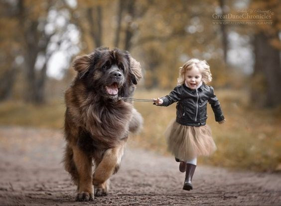 Closure, dog, girl with dog, cute, wholesome