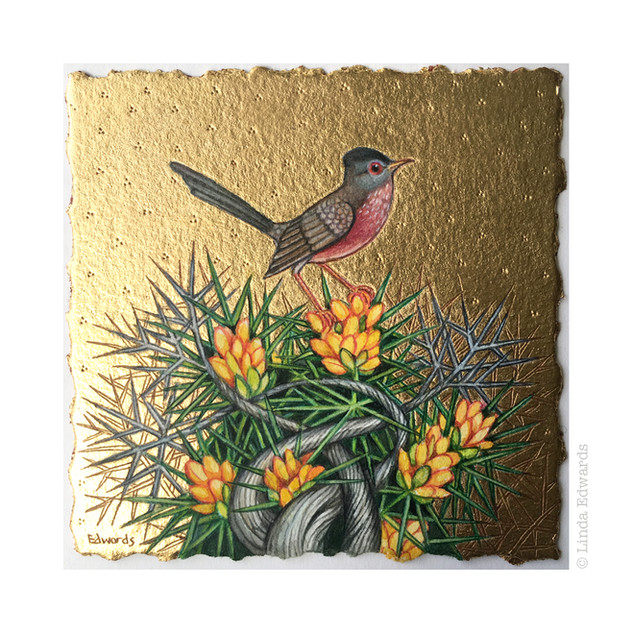 Dartford Warbler and Gorse SOLD