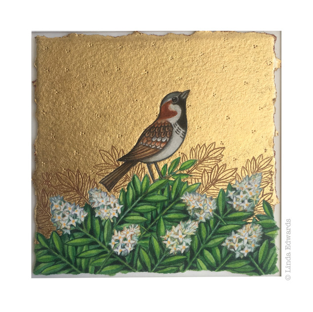 A Sparrow in the Privet Hedge SOLD