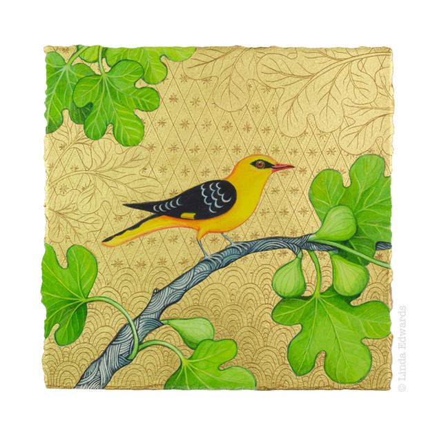 Golden Oriole in a Fig Tree SOLD