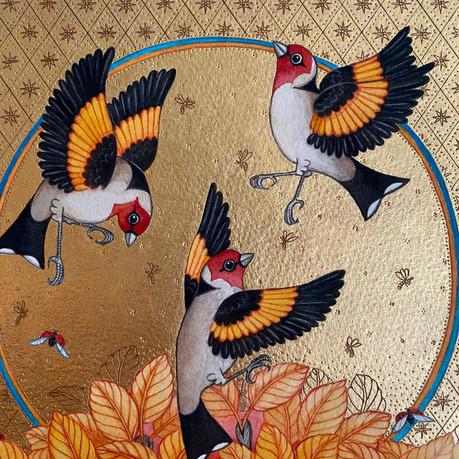 Goldfinch Summer