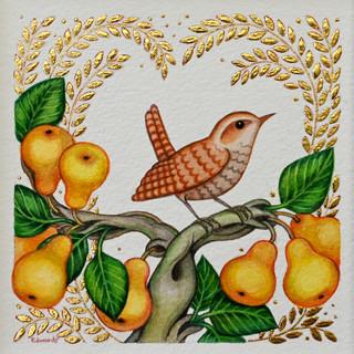 343 Golden Pears.jpg