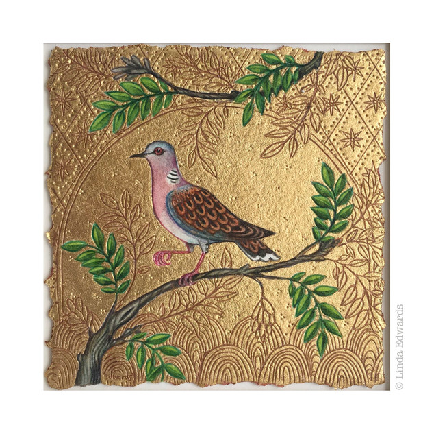 Turtle Dove SOLD