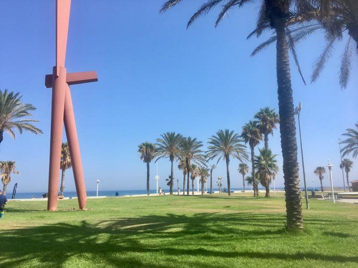 Gluten-free in Malaga