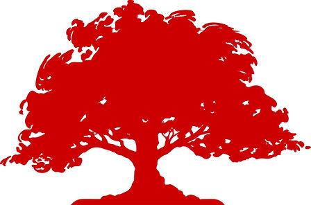 oak-tree-red.jpg