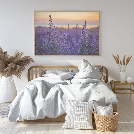 Bugloss - Wild Photographic Prints by Regenweibchen Photography