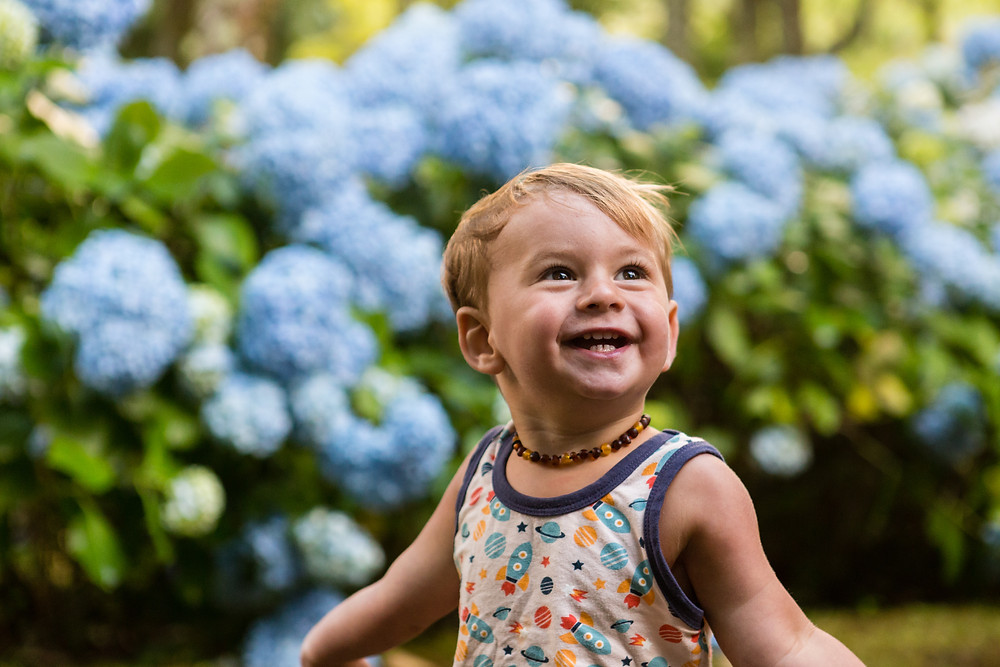 smiling toddler and Azores hydrangea trail