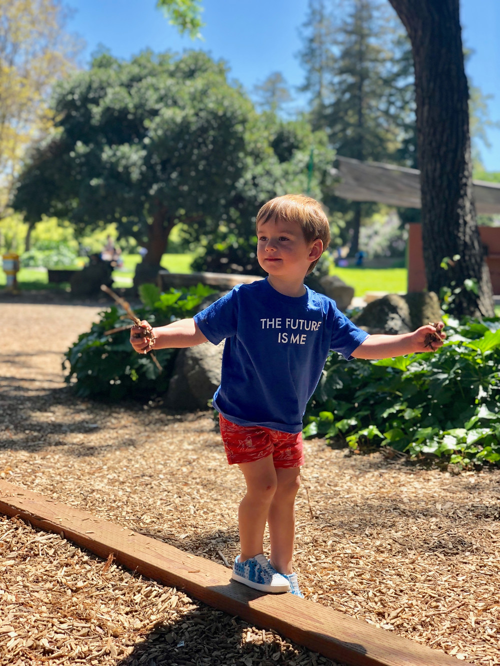 little boy with handfuls of woodchips, walking on beam at San Jose playground