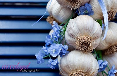 Garlic: the natural anti-biotic