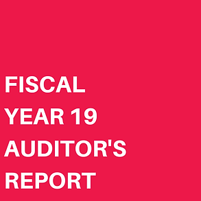 FISCAL YEAR 19 AUDITOR'S REPORT.png