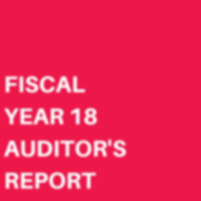 FISCAL YEAR 17 AUDITOR'S REPORT-5.png