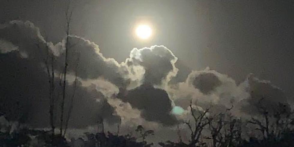 In-Person -- Full Moon in Aquarius Sound Healing