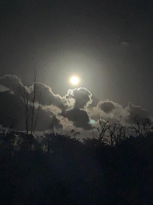 Nov 29, 2020: Gemini Full Moon Release Ceremony & Drum Circle (In Person)