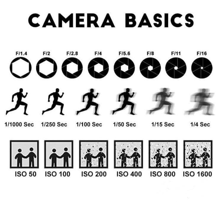 Camera basics provided from https://www.thephoblographer.com/