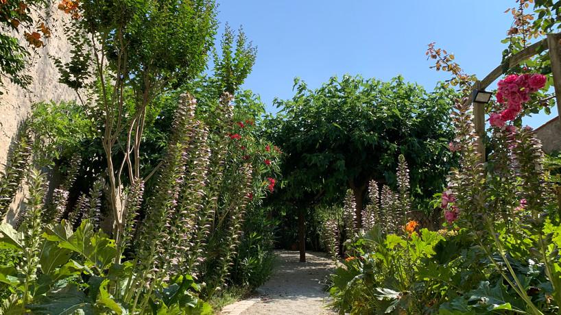 le patio, plein été